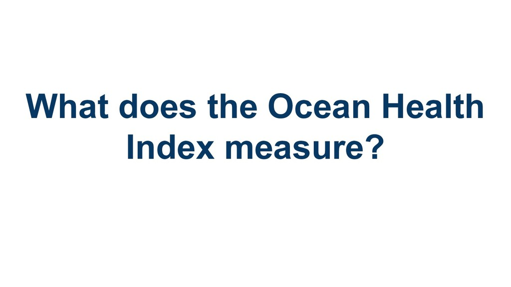 What does the Ocean Health Index measure?