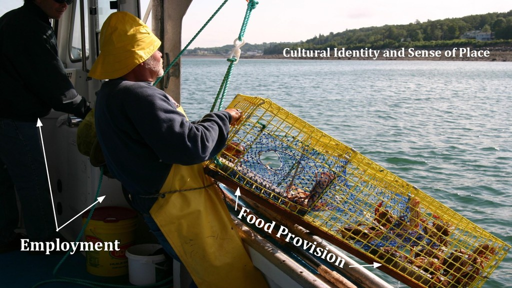 Employment Cultural Identity and Sense of Place...