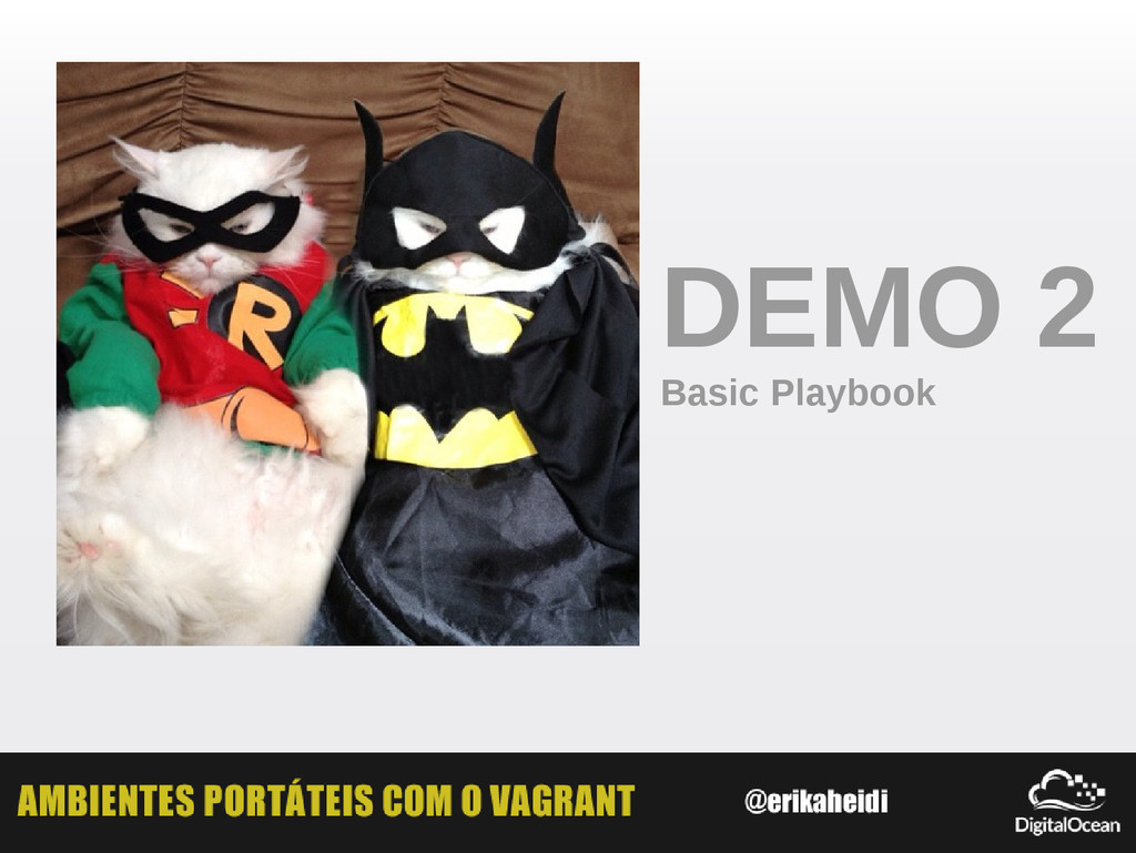 DEMO 2 Basic Playbook
