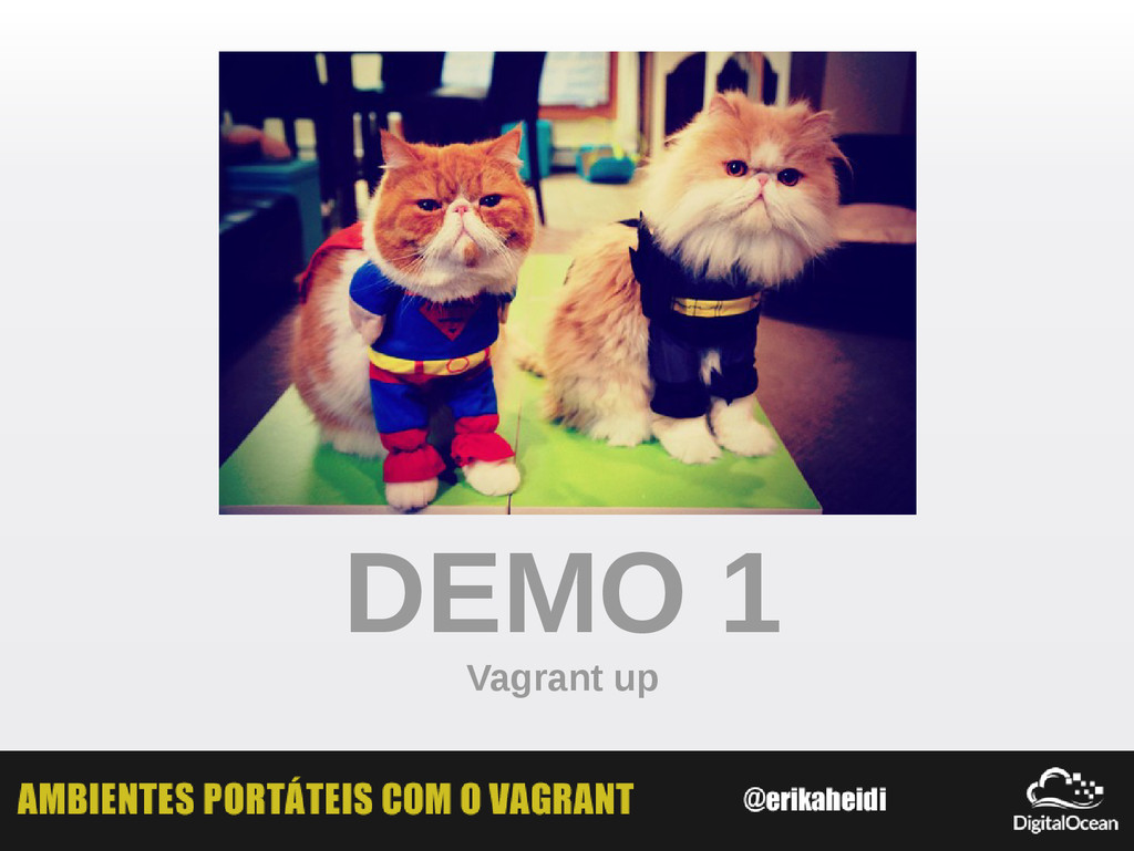 DEMO 1 Vagrant up