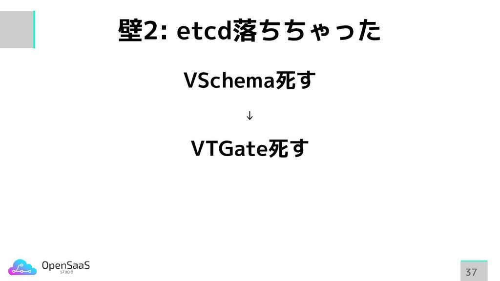壁2: etcd落ちちゃった VSchema死す ↓ VTGate死す 37 37