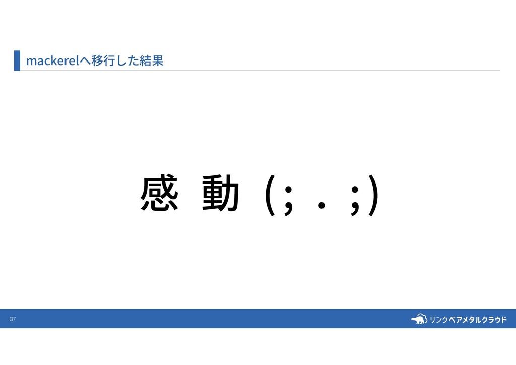 37 mackerelへ移⾏した結果 感 動 (; . ;)