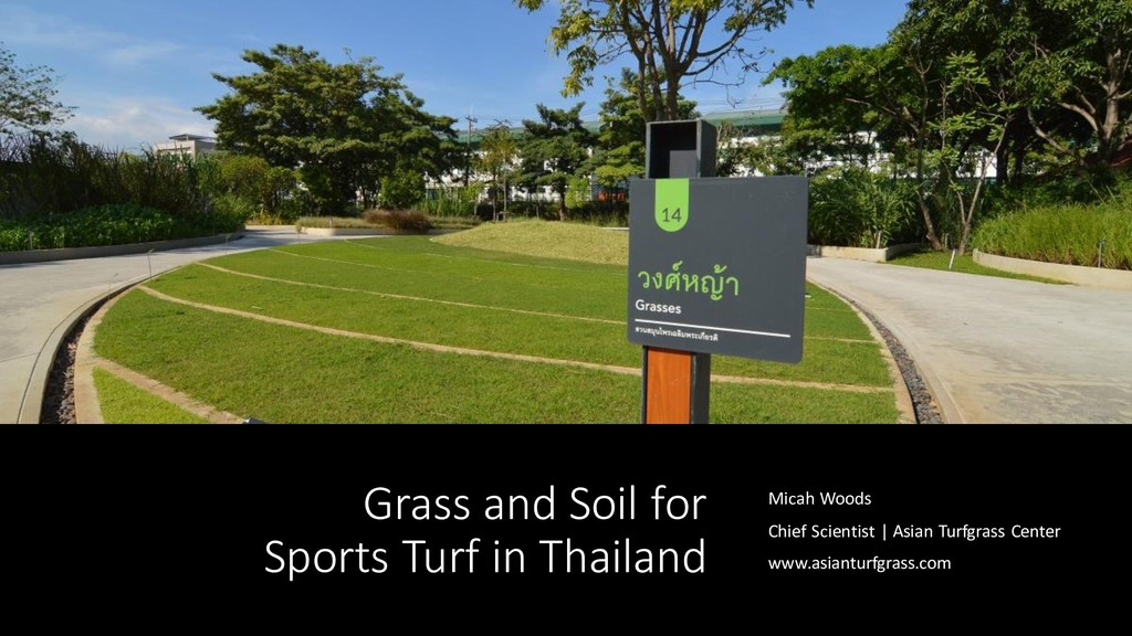 Grass and Soil for Sports Turf in Thailand Mica...