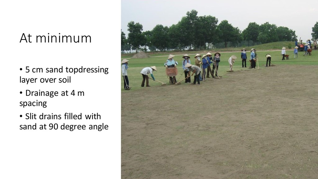 At minimum • 5 cm sand topdressing layer over s...