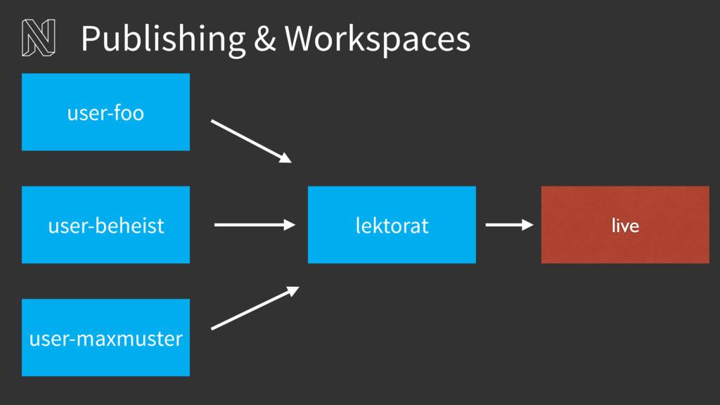Publishing & Workspaces lektorat user-beheist u...