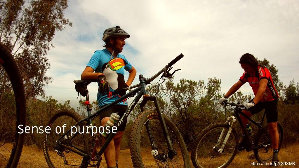 TODO: Add purpose, team picture here Sense of p...