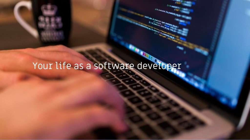 Your life as a software developer