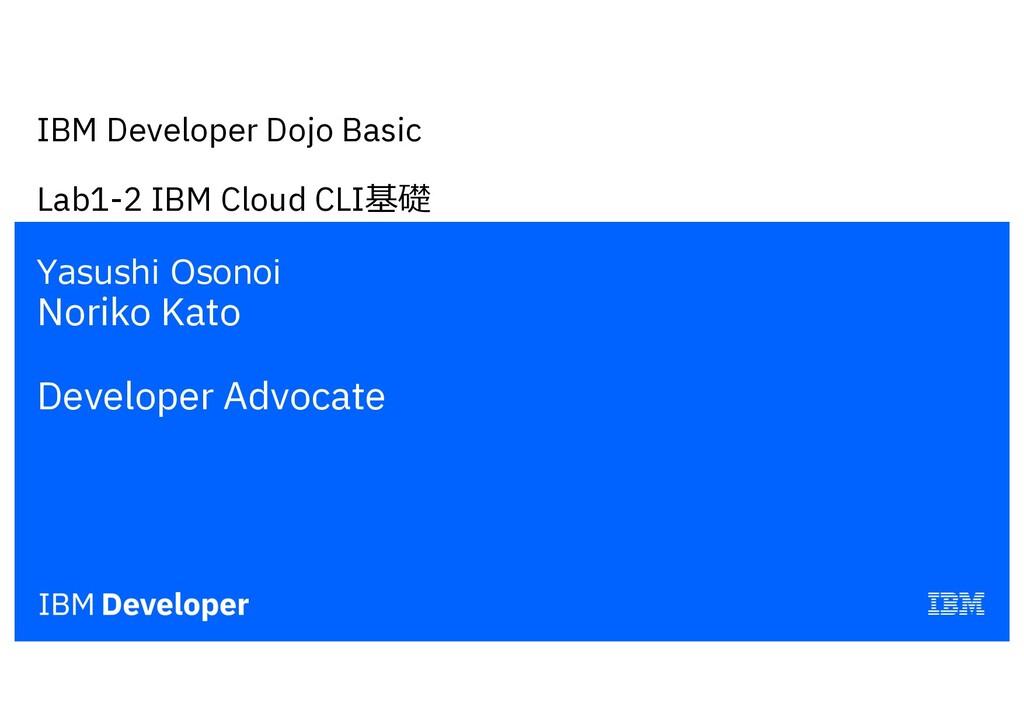 IBM Developer Dojo Basic Lab1-2 IBM Cloud CLI基礎...