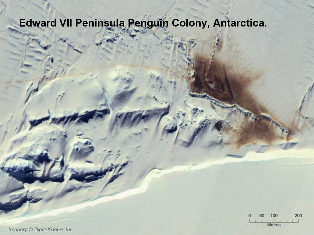 Imagery © DigitalGlobe, Inc. Edward VII Peninsu...