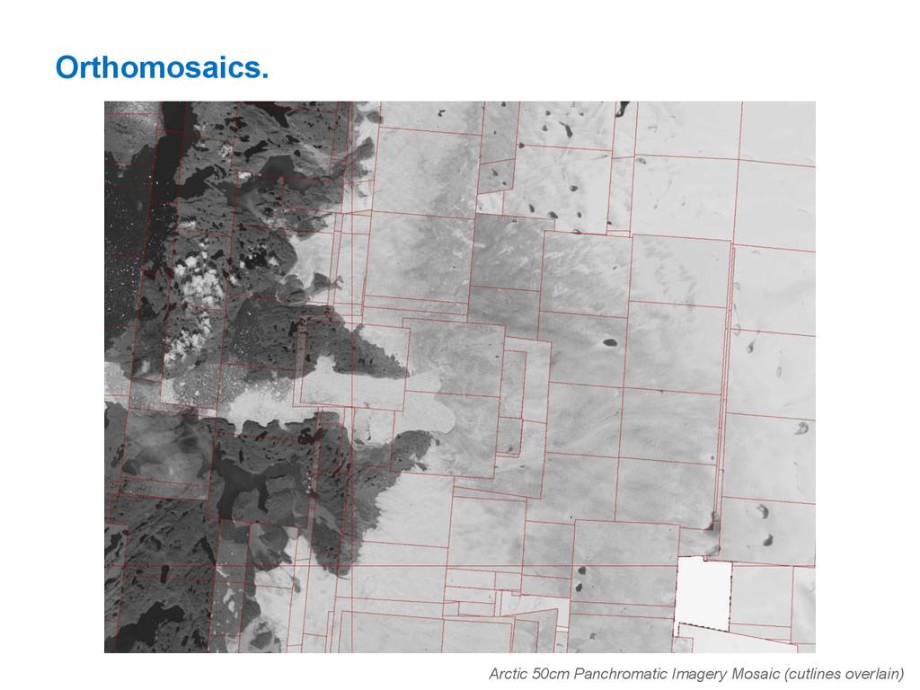 Orthomosaics. Arctic 50cm Panchromatic Imagery ...