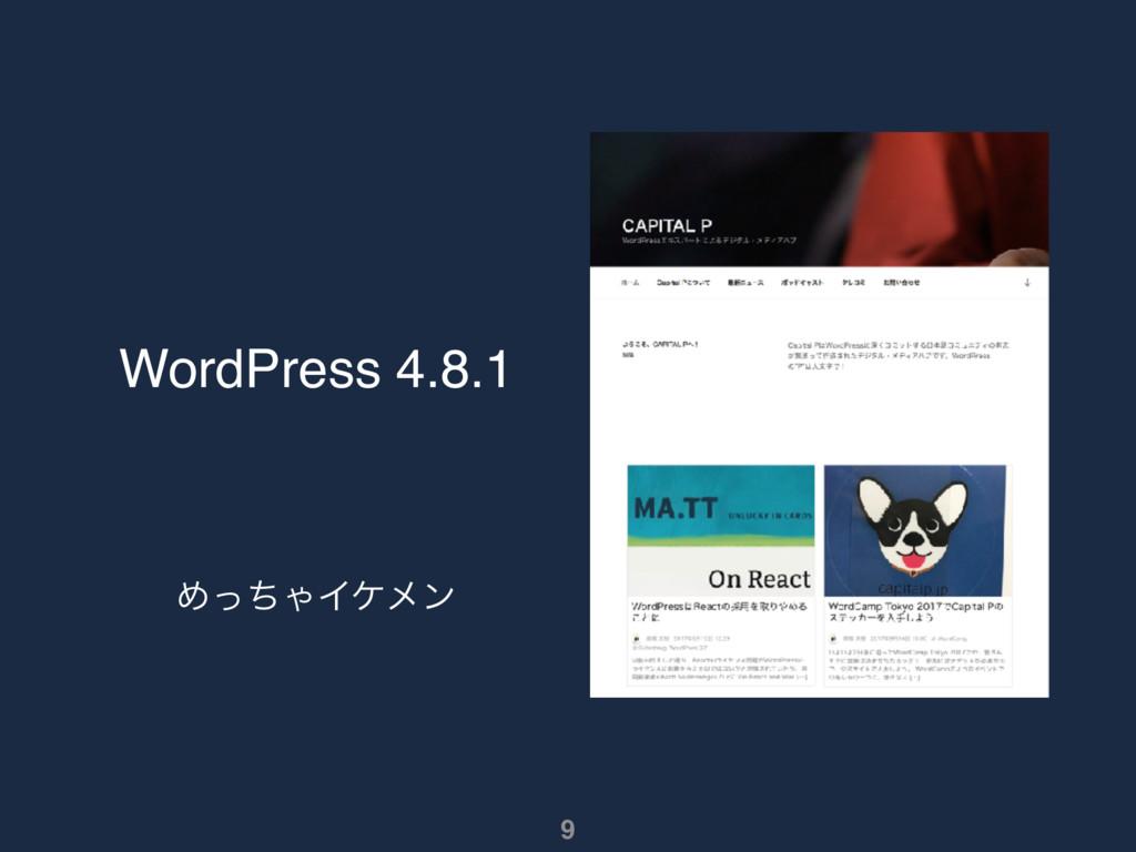 WordPress 4.8.1 ΊͬͪΌΠέϝϯ 9