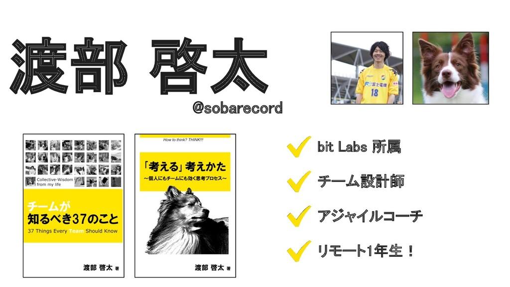 渡部 啓太 @sobarecord bit Labs 所属 チーム設計師 アジャイルコ...