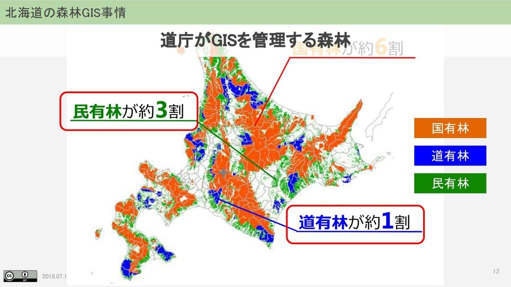 2018.07.19 地理空間フォーラム in 札幌 12 北海道の森林GIS事情 国有林 道...