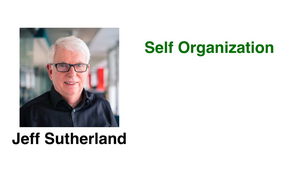 Jeff Sutherland Self Organization