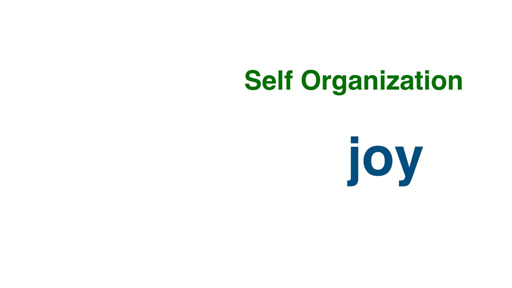 joy Self Organization