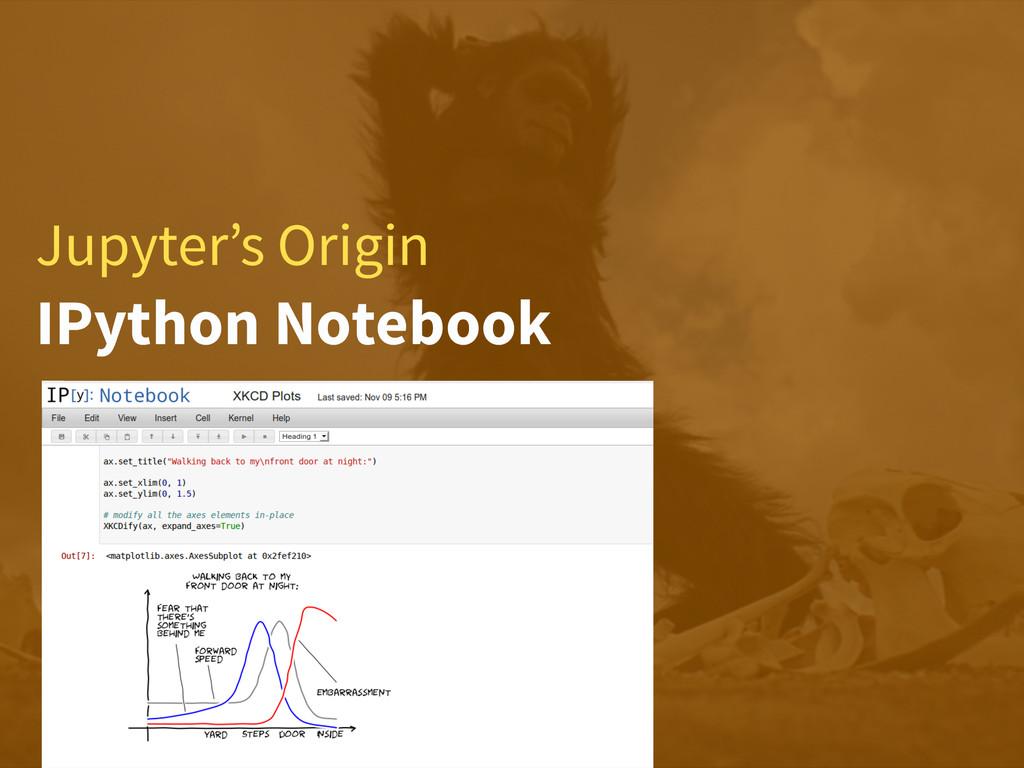 Jupyter's Origin IPython Notebook