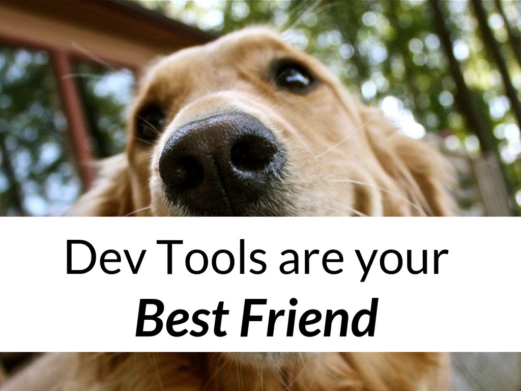 Dev Tools are your Best Friend