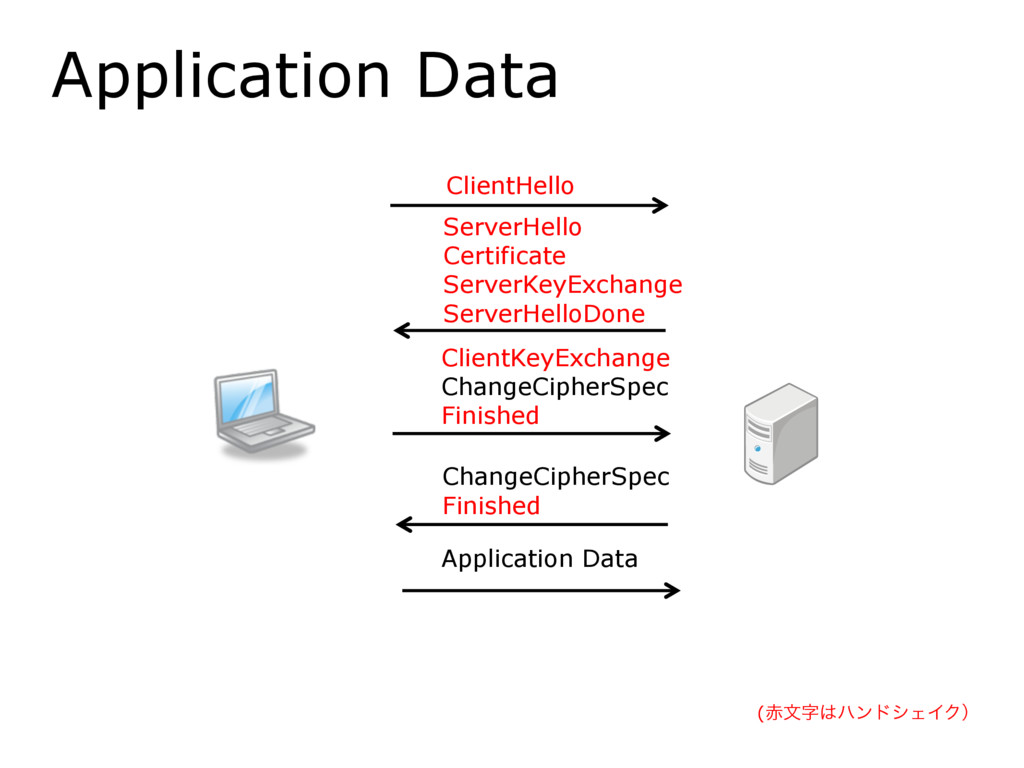 Application Data ClientHello ServerHello Certif...