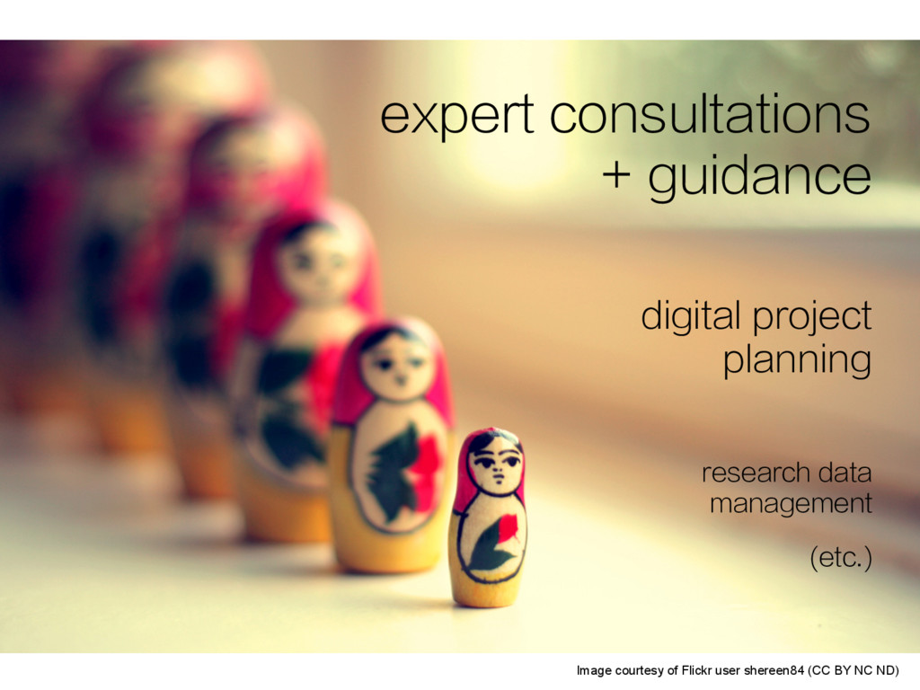 expert consultations + guidance digital project...