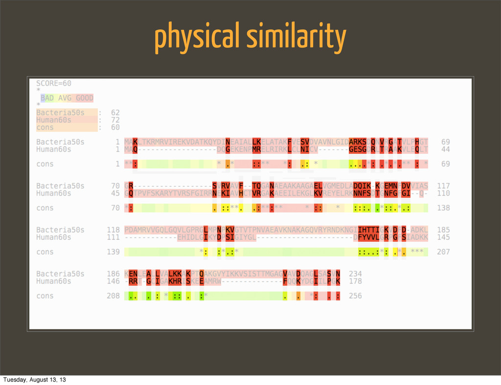 physical similarity Tuesday, August 13, 13