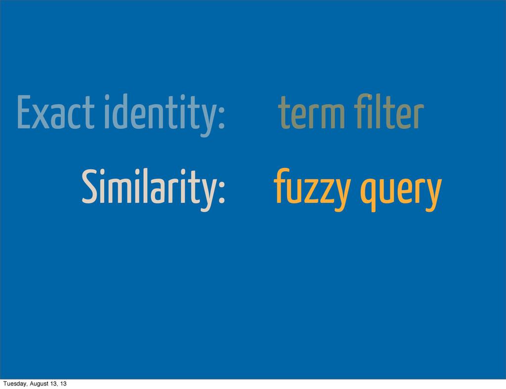 Exact identity: term filter Similarity: fuzzy q...