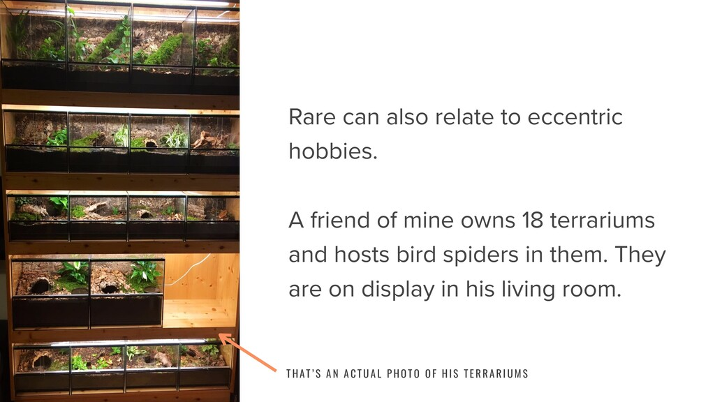 Rare can also relate to eccentric hobbies. A fr...