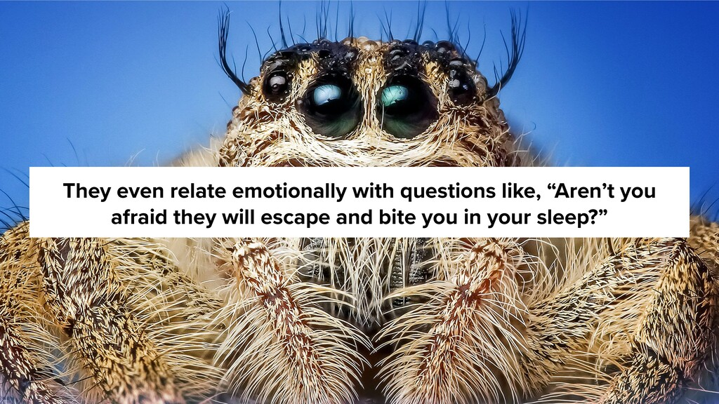 They even relate emotionally with questions lik...