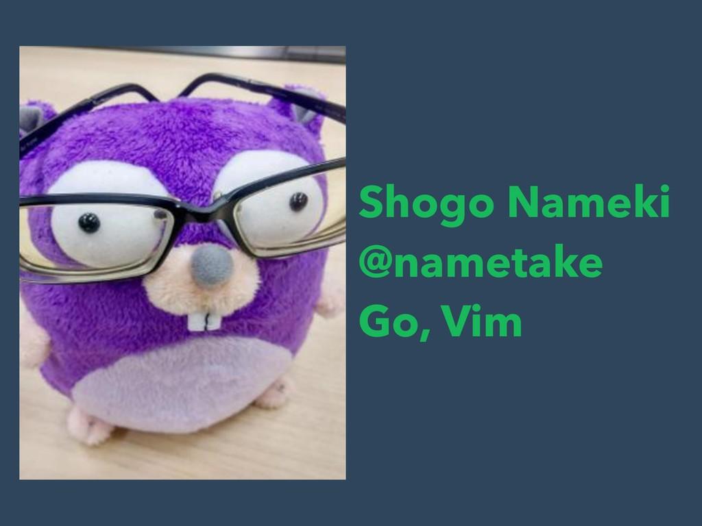 Shogo Nameki @nametake Go, Vim