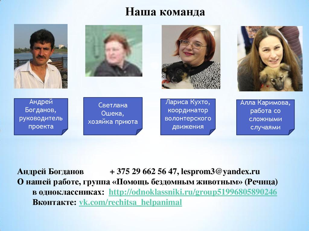 Наша команда Андрей Богданов, руководитель прое...