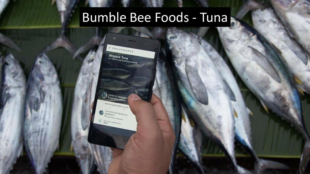 Bumble Bee Foods - Tuna