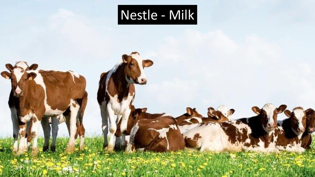 Nestle - Milk