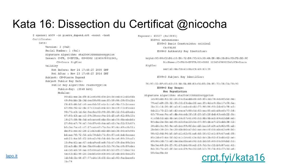 Kata 16: Dissection du Certificat @nicocha crpt...