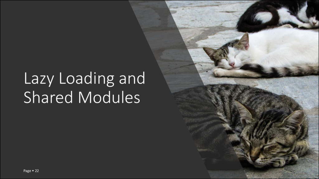 Lazy Loading and Shared Modules Page  22