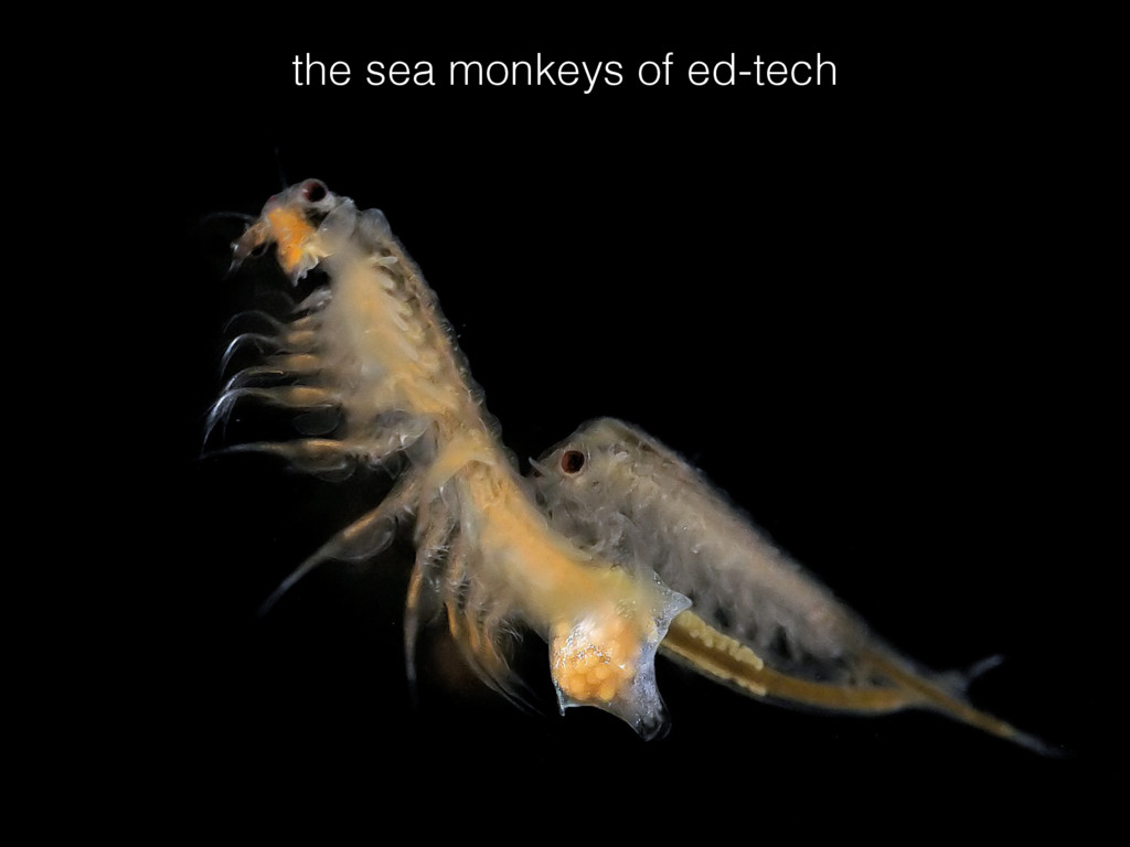 the sea monkeys of ed-tech