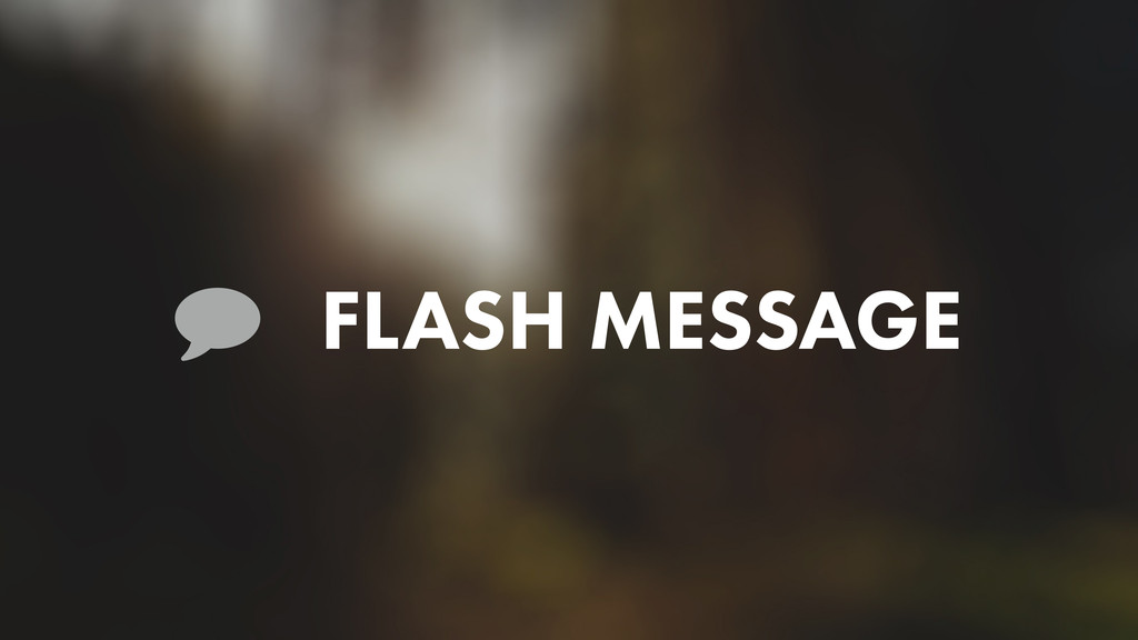 FLASH MESSAGE