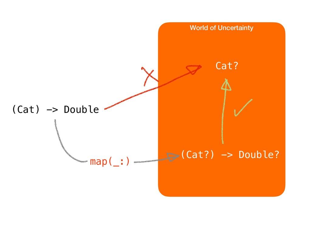 World of Uncertainty Cat? (Cat) -> Double (Cat?...