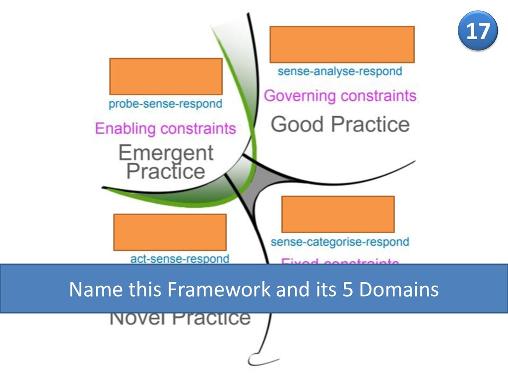17 Name this Framework and its 5 Domains