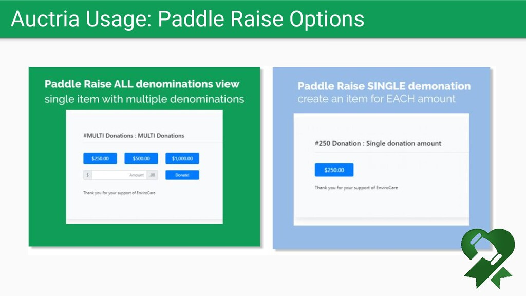 Auctria Usage: Paddle Raise Options