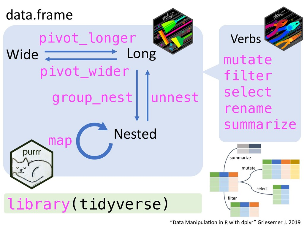data.frame Long Wide Nested pivot_longer pivot_...
