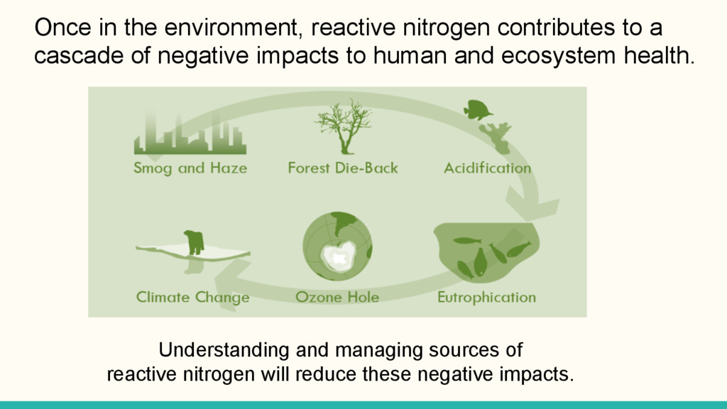 Once in the environment, reactive nitrogen cont...