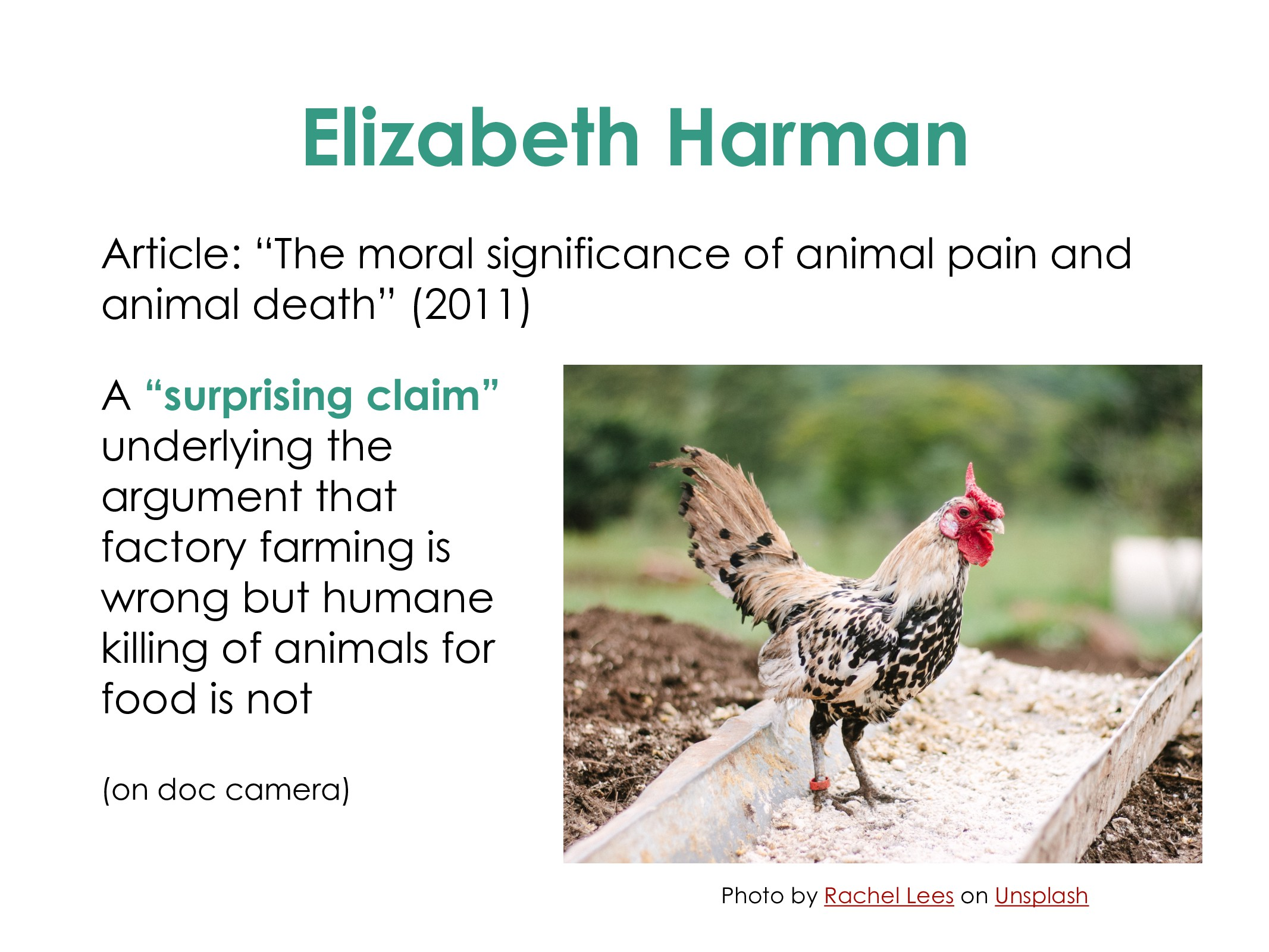 "Elizabeth Harman Article: ""The moral significan..."
