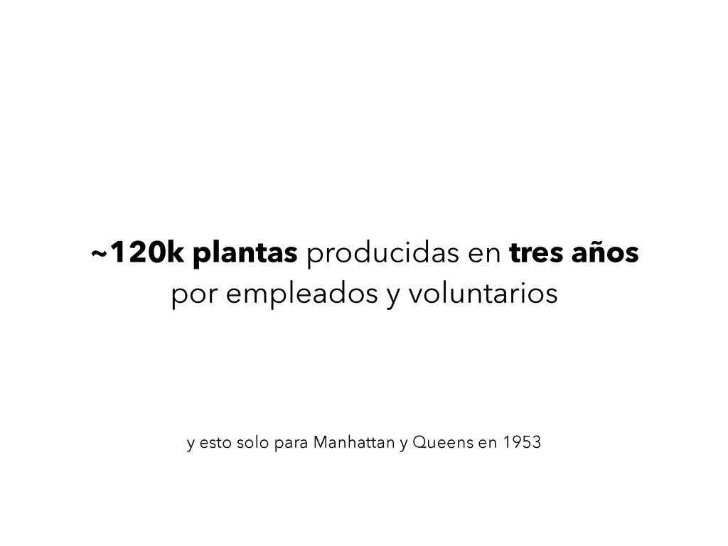 ~120k plantas producidas en tres años por empl...
