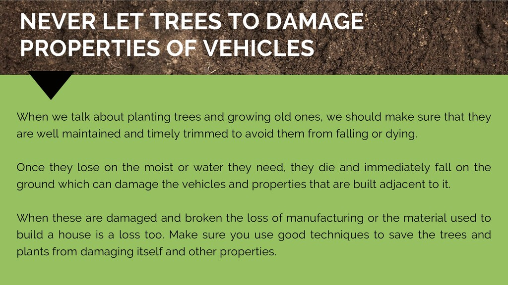 When we talk about planting trees and growing o...