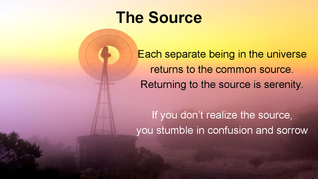 The Source Each separate being in the universe ...