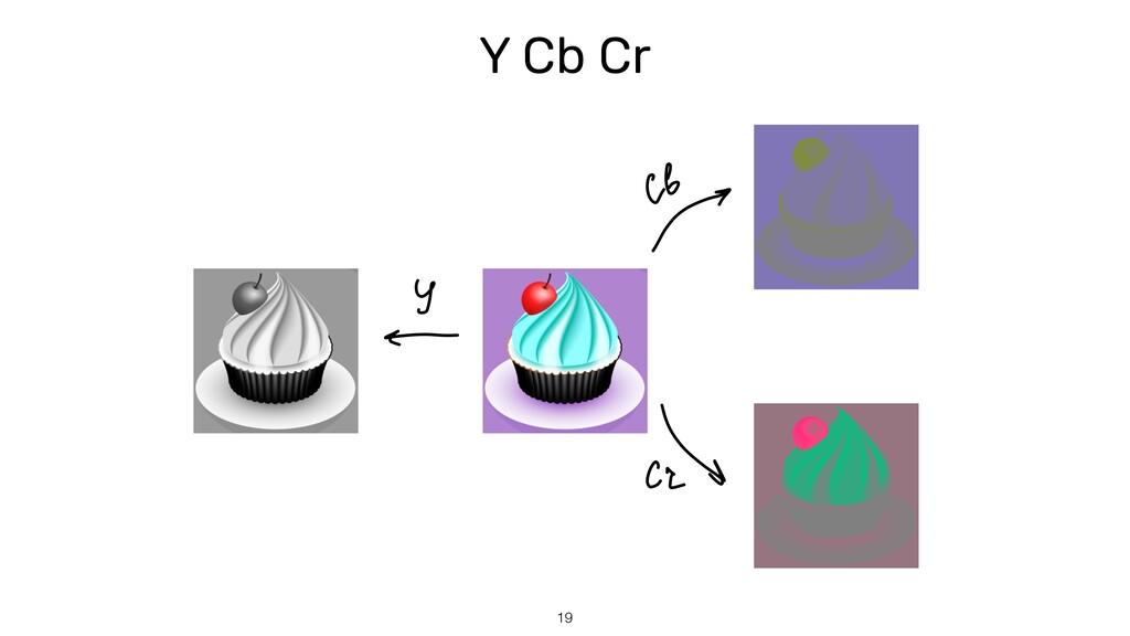 Y Cb Cr 19