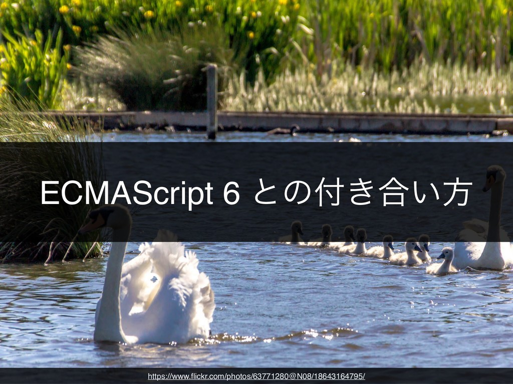 ECMAScript 6 ͱͷ͖߹͍ํ https://www.flickr.com/phot...