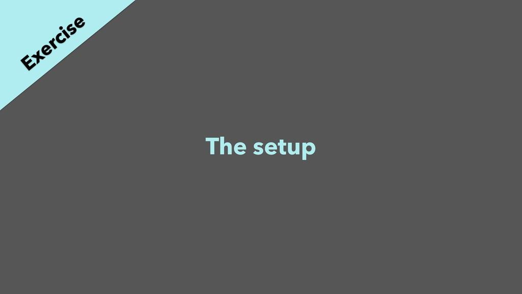 The setup Exercise