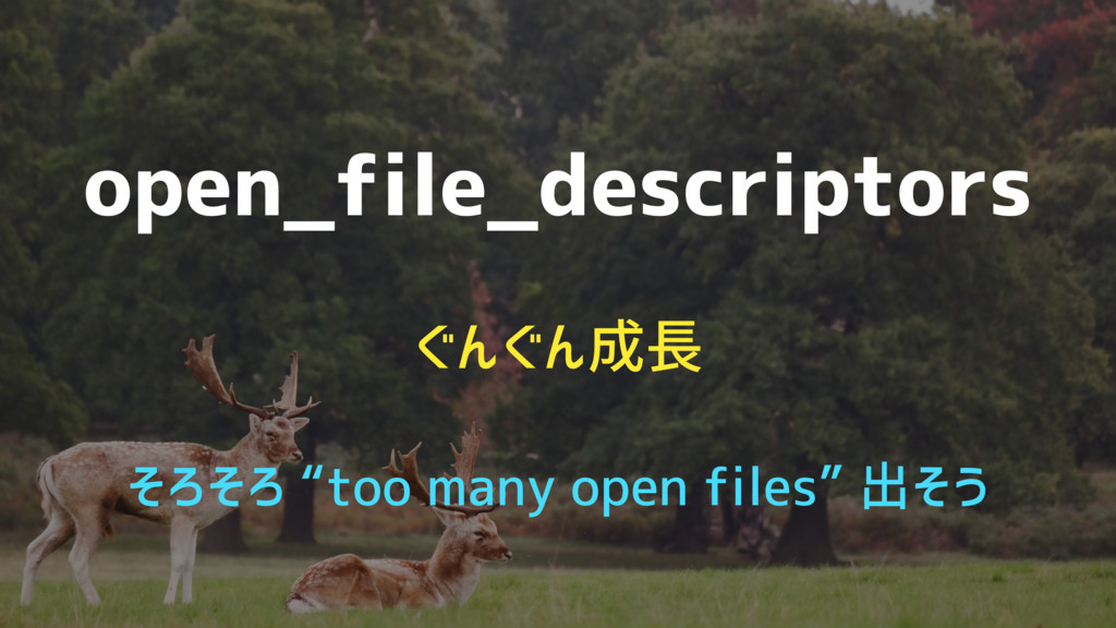 "open_file_descriptors ぐんぐん成長 そろそろ ""too many ope..."