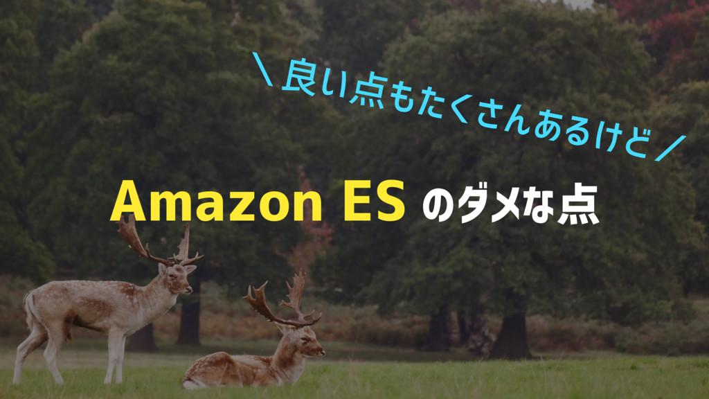 Amazon ES のダメな点 \良い点もたくさんあるけど/