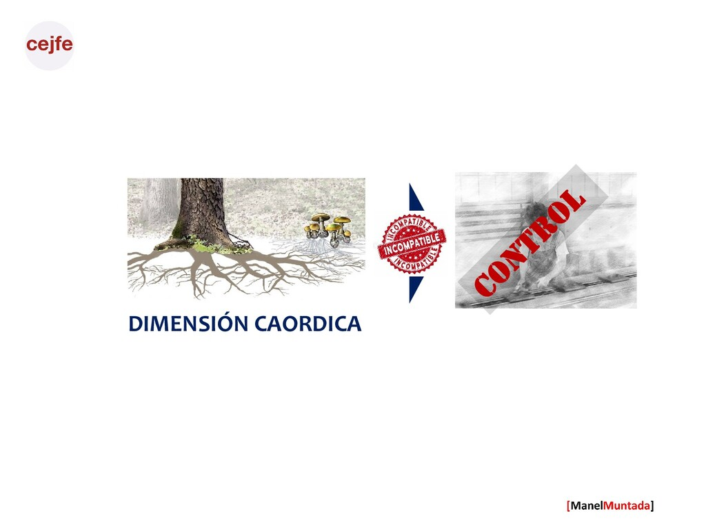 DIMENSIÓN CAORDICA